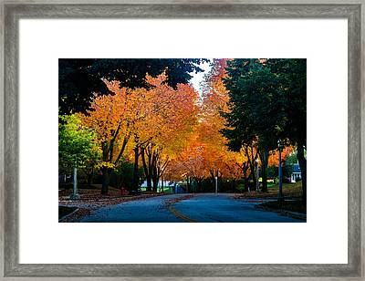 Colors Of The Season Framed Print by Daniel Chen