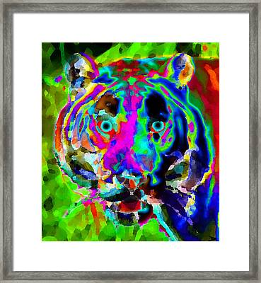 Colors Of The Tiger Framed Print by David Lee Thompson