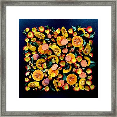 Colors Of Winter Squash Framed Print