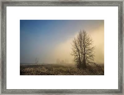 Colors Of Winter Sunrise Framed Print by Kunal Mehra