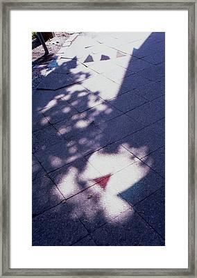 Colors On The Shadows Framed Print