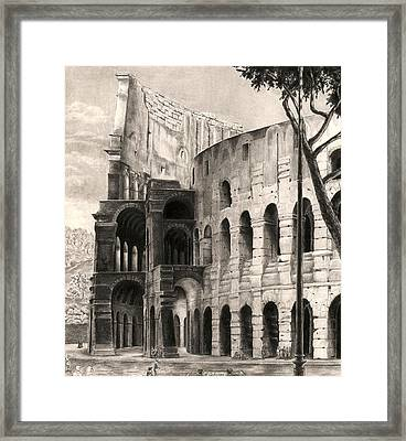 Colosseo Framed Print by Norman Bean