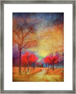 Colour Burst Framed Print by Tara Turner