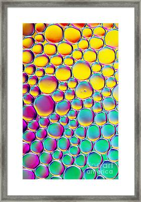Colour Full Framed Print by Tim Gainey