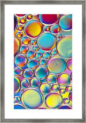 Colour Me Cool Framed Print