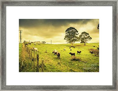 Colourful Australian Cattle Station Framed Print by Jorgo Photography - Wall Art Gallery