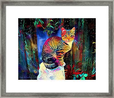 Colourful Calico Framed Print