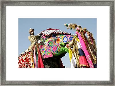 Colourful Elephants At Elephant Festival Framed Print by John Sones