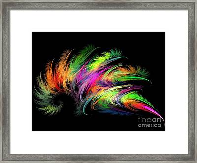Colourful Feather Framed Print