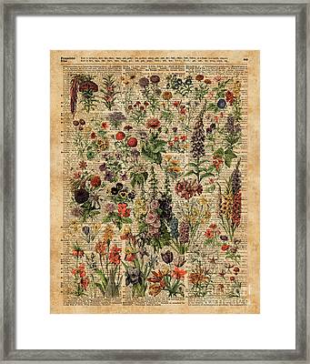 Colourful Meadow Flowers Over Vintage Dictionary Book Page  Framed Print by Jacob Kuch