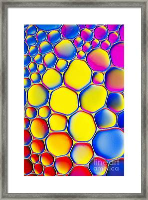 Colourmatic Framed Print by Tim Gainey