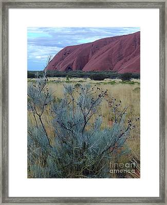Colours And Contours - Uluru Framed Print by Phil Banks