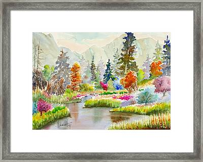 Colours Galore Framed Print