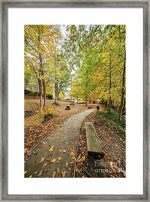 Colours Of Fall Framed Print by Adrian Evans