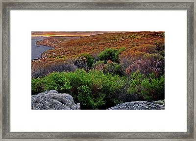 Framed Print featuring the photograph Colours Of North Head by Miroslava Jurcik