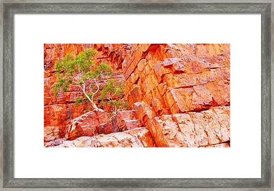 Colours Of Ormiston Gorge, Northern Territory Framed Print