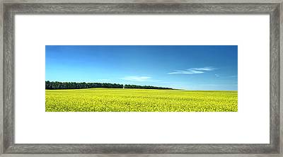 Colours Of Summer. Voznesenske, 2015. Framed Print