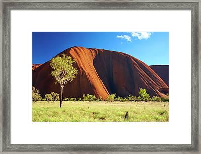 Colours Of Uluru Framed Print by Simon Bradfield