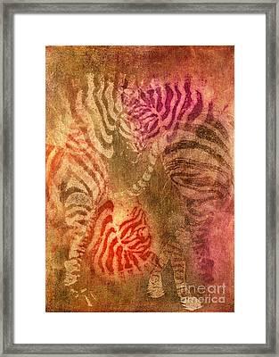 Colrfull Donkies Framed Print