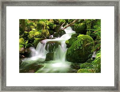 Columbia Gorge Stream Framed Print