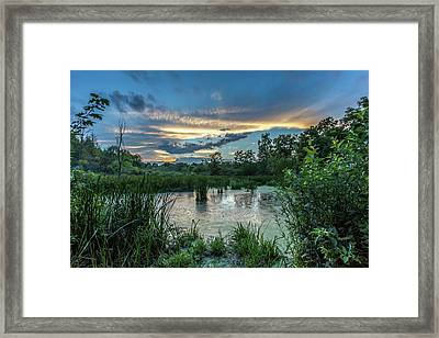Columbia Marsh Sunset Framed Print