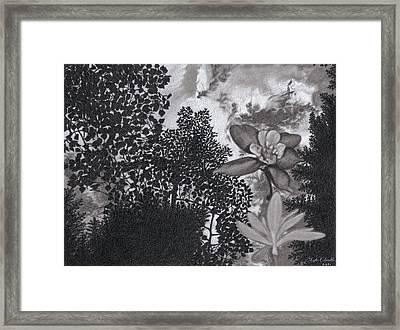Columbine Sky Framed Print by Tyler Smith