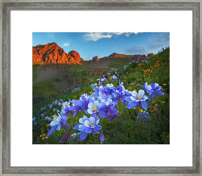 Framed Print featuring the photograph Columbine Sunrise by Darren White