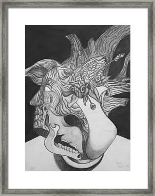 Combination Study Framed Print by Dan Fluet
