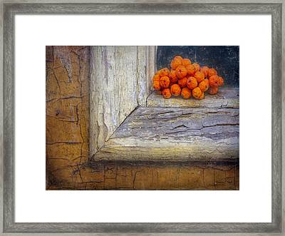 Framed Print featuring the photograph Come And Gone by Bellesouth Studio