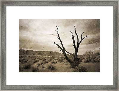 Come Closer And See Framed Print