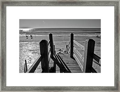 Come Down To My Level Framed Print by Betsy Knapp