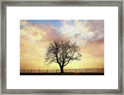 Framed Print featuring the photograph Come Fly Away by Lori Deiter