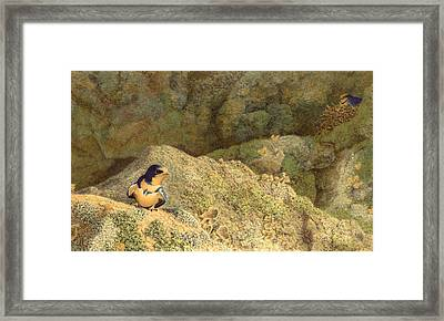 Come No Further Framed Print