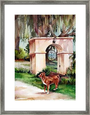 Come Out And Play Framed Print by Michael  Pearson