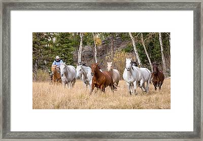 Come Running Framed Print by Jack Bell