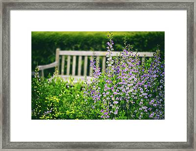 Come Sit A Spell Framed Print by Jessica Jenney