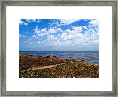 Framed Print featuring the photograph Come Sit With Me by Joyce Dickens