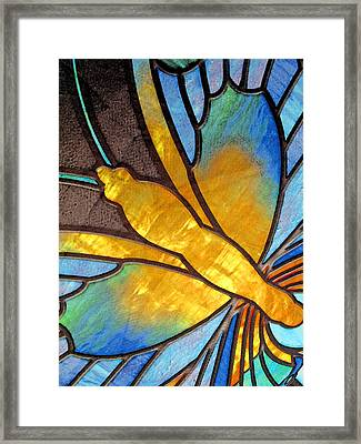 Come Soar With Me Framed Print