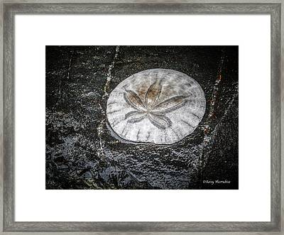 Come To Be Here Framed Print by Roxy Hurtubise