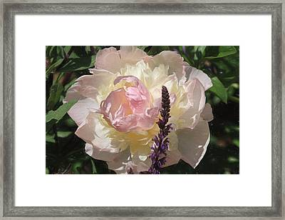 Come To Me Softly Framed Print