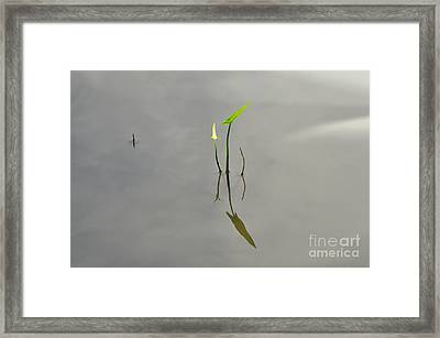 Come To The Quiet Framed Print