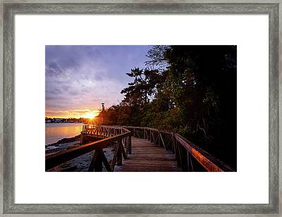 Come Walk With Me Framed Print