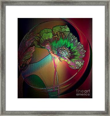 Comely Cosmos Framed Print by Irma BACKELANT GALLERIES