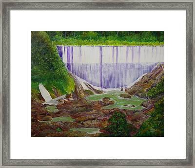 Comerio Dam Framed Print by Tony Rodriguez