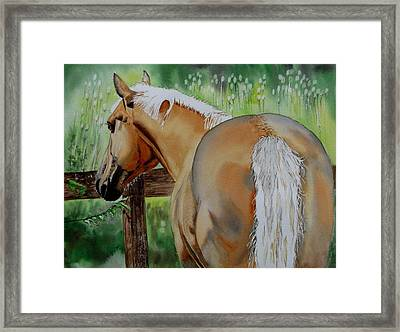 Comet Framed Print by Maria Barry