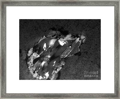 Comet Particle Collected By Stardust Framed Print