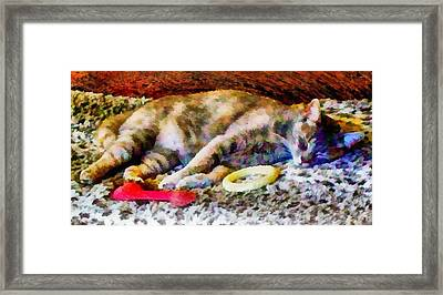 Comfortable In My Brothers Bed Framed Print by Dorothy Berry-Lound