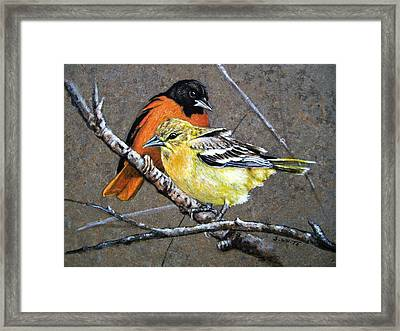 Comforting Framed Print by Stan White