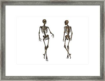 Coming And Going Framed Print