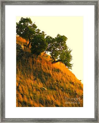 Framed Print featuring the photograph Coming Home Again by Joe Jake Pratt